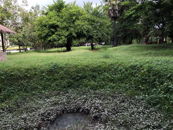 One of the mass graves