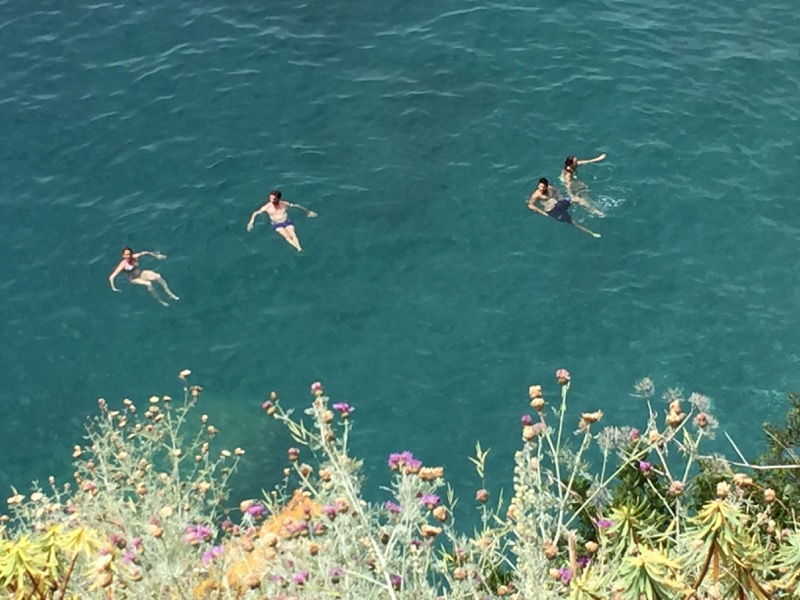 We enjoyed watching these four floating in the aquamarine blue of the Mediterranean.